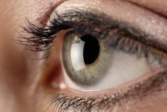 thumb-32928120219-retina-resized
